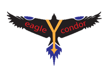 eagleYcondor