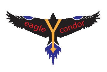 eagleYcondor